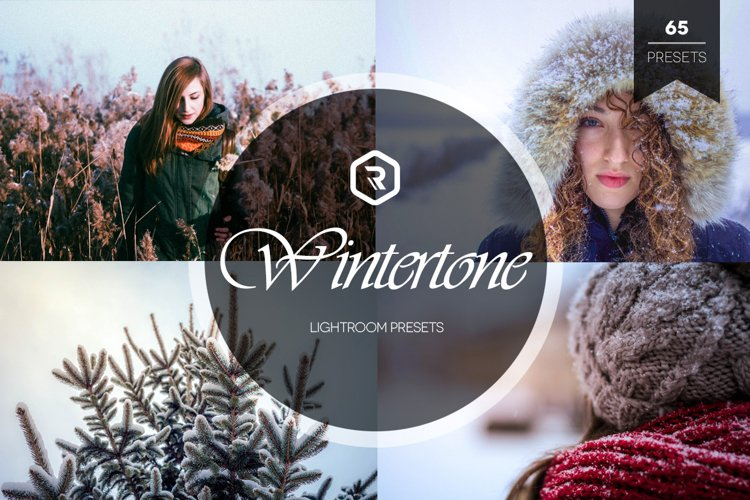 Wintertone Lightroom Presets