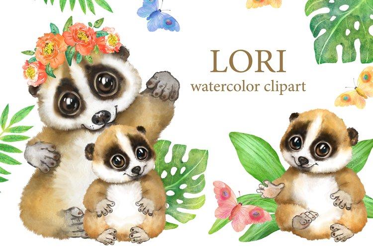 Lori watercolor clipart. Cute tropical animal, nursery decor