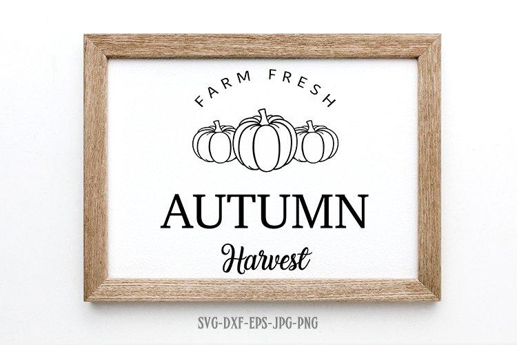pumpkin patch svg, fall svg, autumn harvest svg, pumpkin svg example image 1
