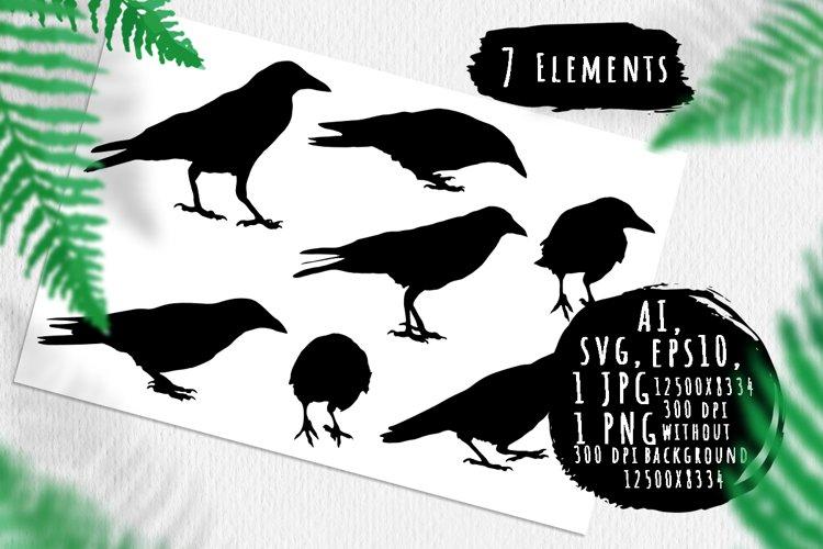 Crow birds silhouettes example image 1