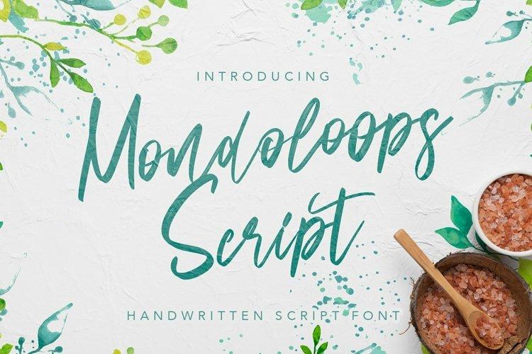 Web Font Mondoloops - Script Brush Fonts example image 1
