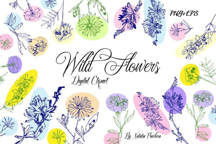 Wild Flowers Clipart