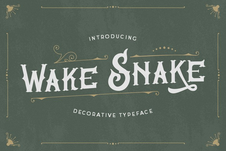 Wake Snake - Decorative Vintage Typeface example image 1