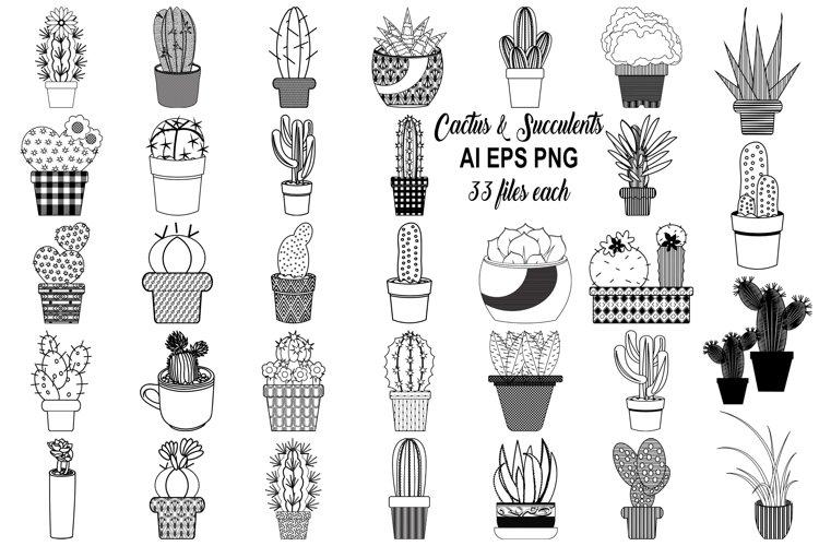 Cactus and Succulents AI EPS PNG, Vector Clip Art