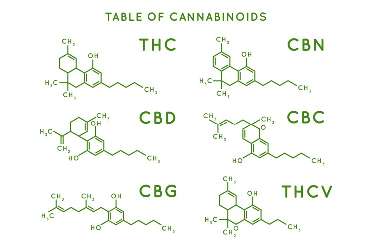 Cannabinoid structure. Cannabidiol molecular structures, THC example image 1