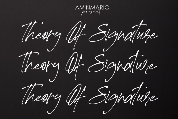 Theory Of Signature example image 1