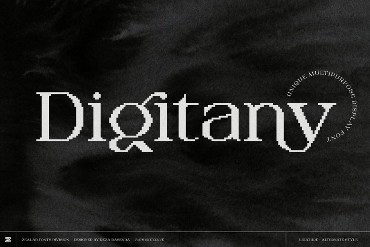 Digitany - Multipurpose Pixel-Serif Font example image 1