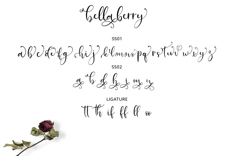 BellaBerry Lovely Script Font example 5