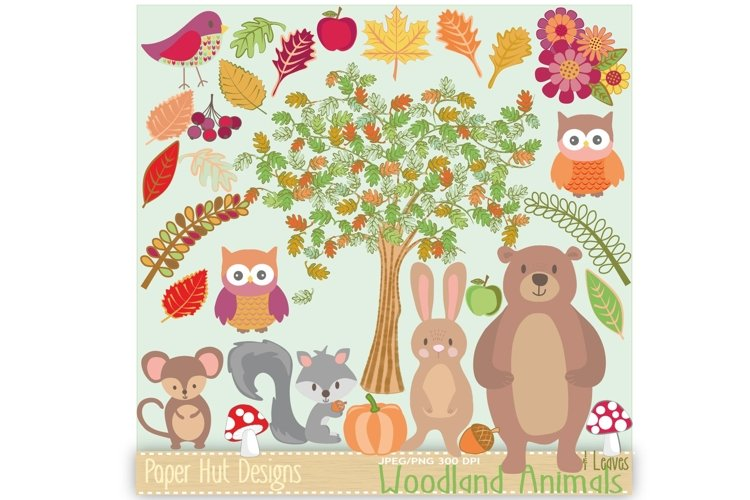 Woodland Animals Clipart example image 1
