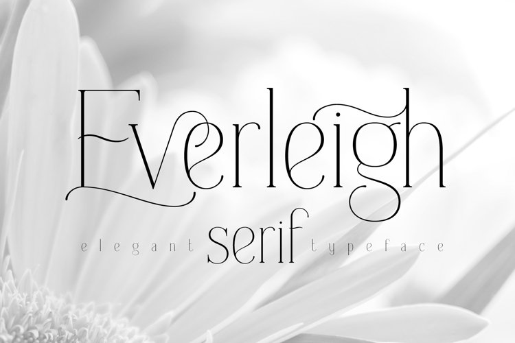 Everleigh Serif font example image 1