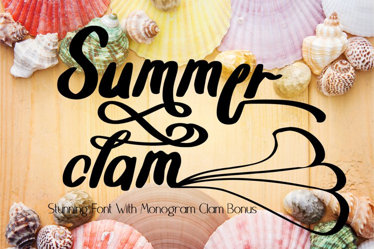 Summer Clam Stunning Font example image 1