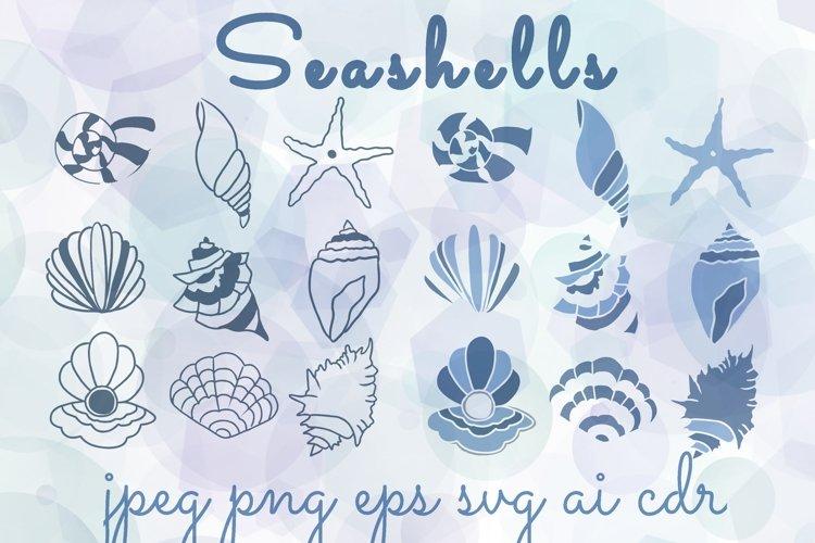 Summer seashells illustrations in eps, png, jpg, svg, ai, cd