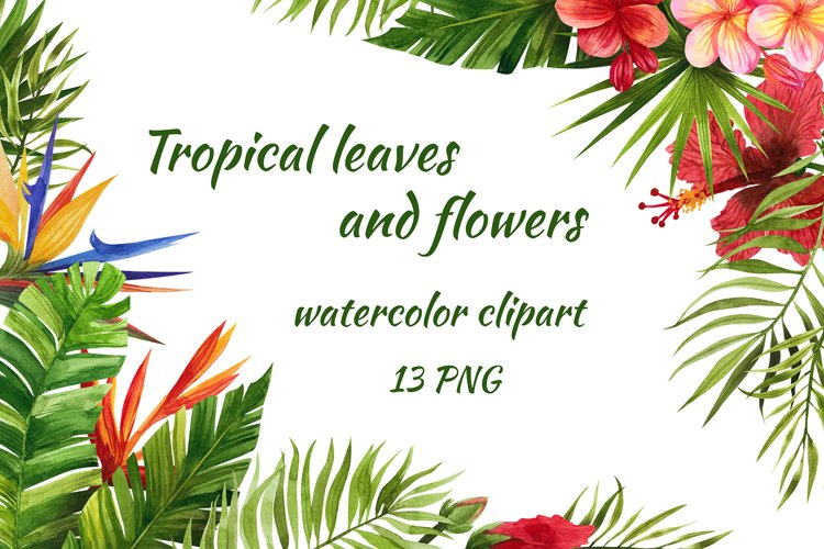 Watercolor tropical leaves and flowers. Hand drawing example image 1