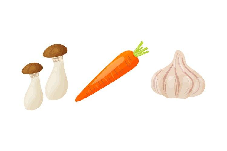 Vegetable Illustrations