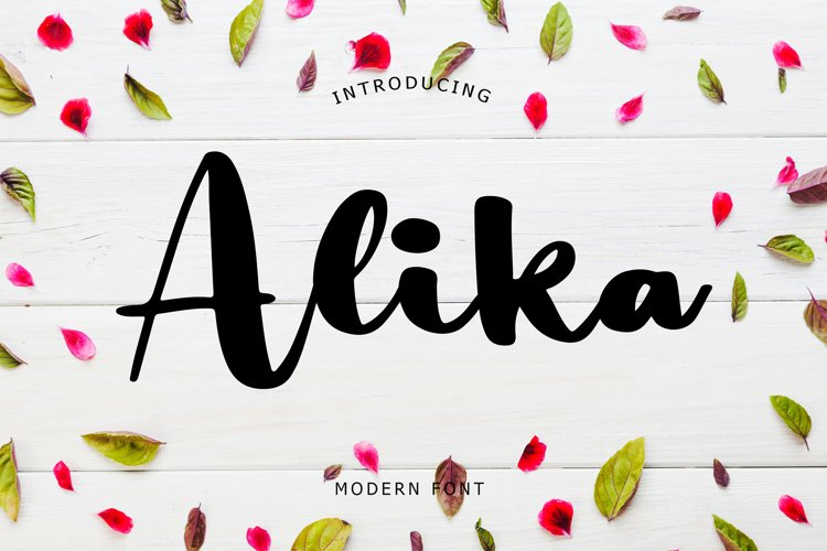 Alika Modern Font example image 1