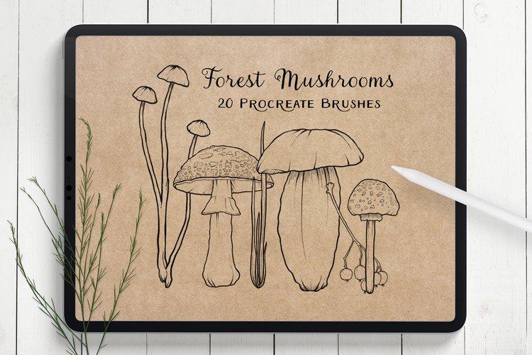Mushroom Procreate Brushes - Stamp Brushes - Hand Drawn example image 1