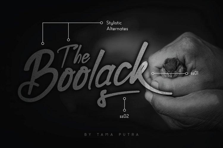 Boolack Elegant Handwritten Typeface example image 1