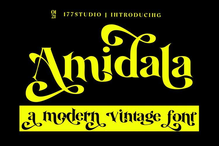 Amidala - Classy Serif Font example image 1