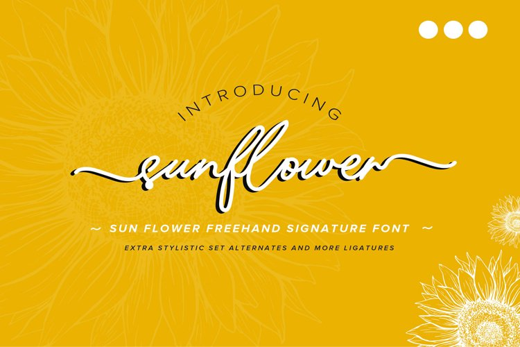 Sunflower | Freehand Signature Font example image 1