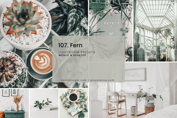 107. Fern Presets