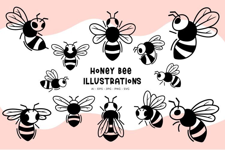 Honey Bee illustrations