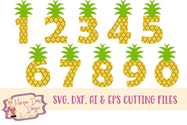 Download Huge Pineapple Bundle Svg, Dxf, Ai, Eps, Png, Jpeg Crafter Files