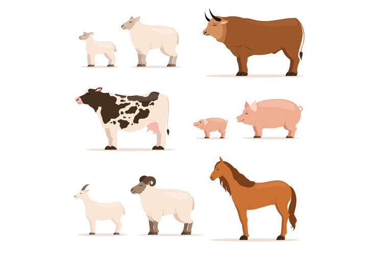 Animals on farm. Lamb, piglet, cow and sheep, goat. Vector i example image 1