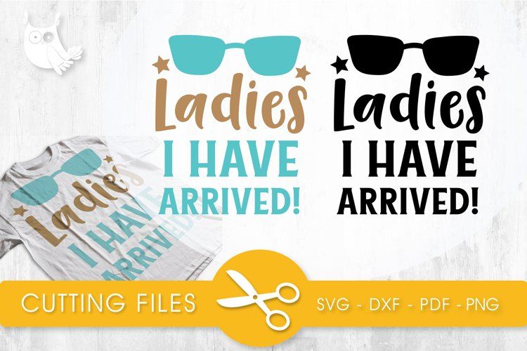 QUOTE-FILE-31 cutting files svg, dxf, pdf, eps included - cut files for cricut and silhouette - Cutting Files SG example image 1