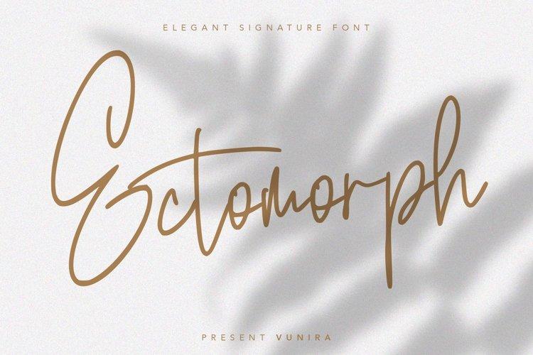 Ectomorph   Elegant Signature Font example image 1