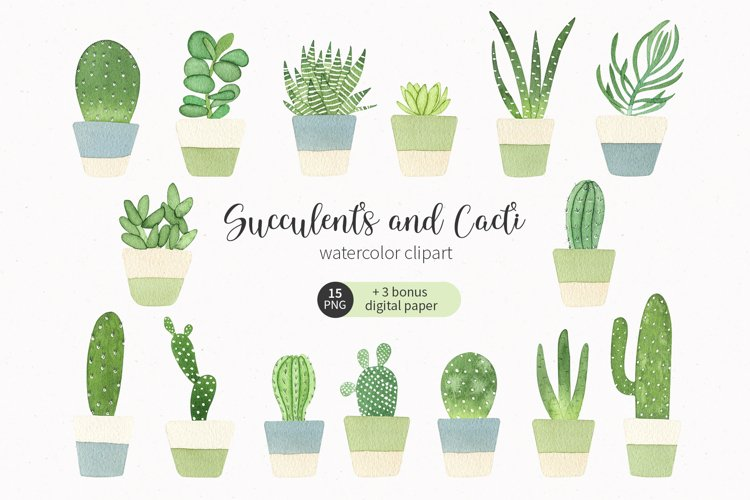 Succulent and cactus watercolor clipart