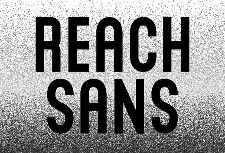 Reach Sans example image 1