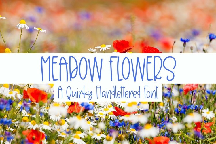 Web Font Meadow Flowers - A Quirky Hand-Lettered Font example image 1
