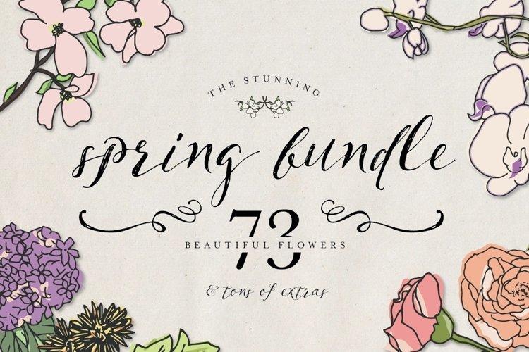 Spring Bundle example image 1