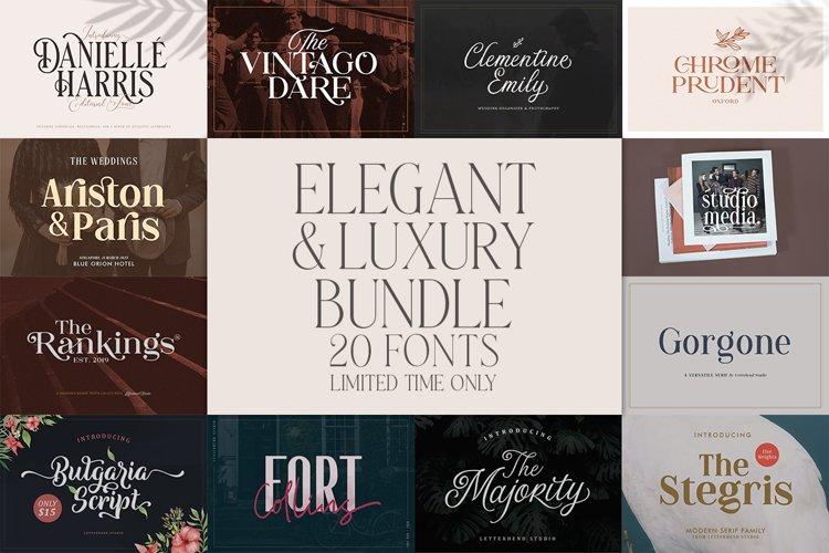 Elegant and Luxury Font Bundle example image 1