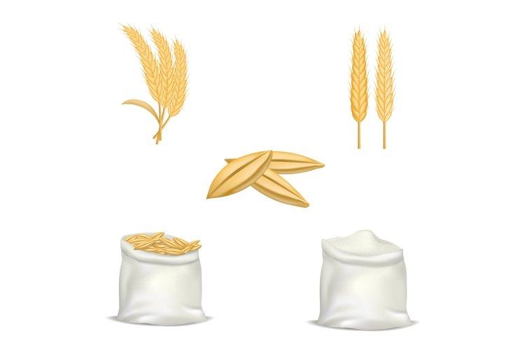 Barley wheat hops mockup set, realistic style example image 1