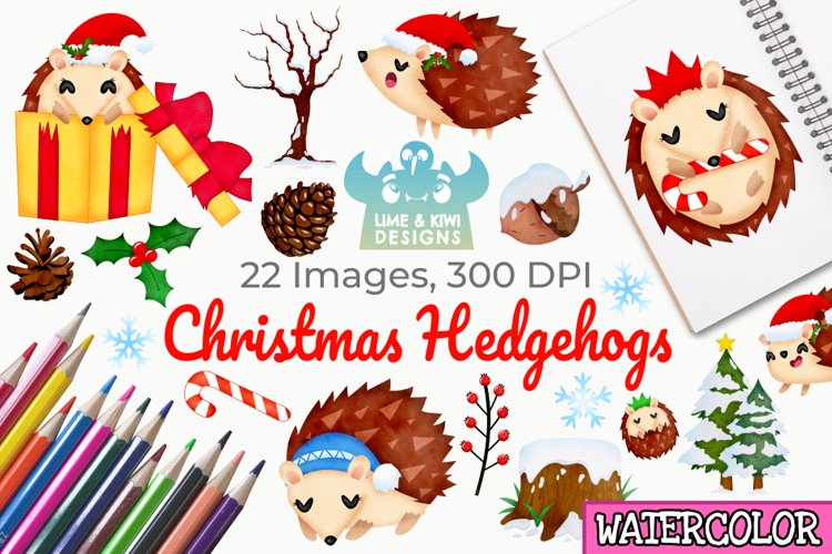 Christmas Hedgehogs Watercolor Clipart, Instant Download example image 1