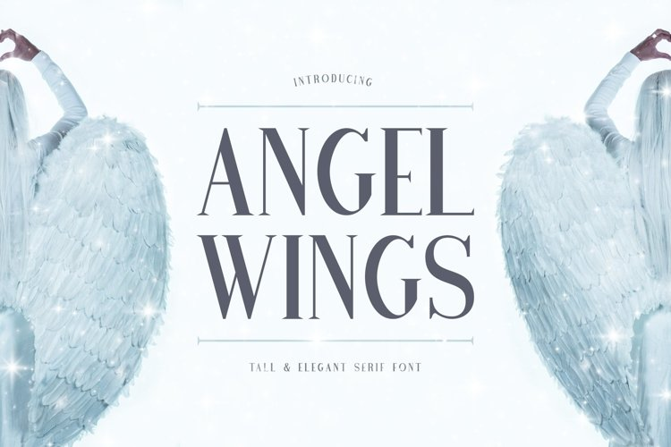 Web Font Angel Wings example image 1