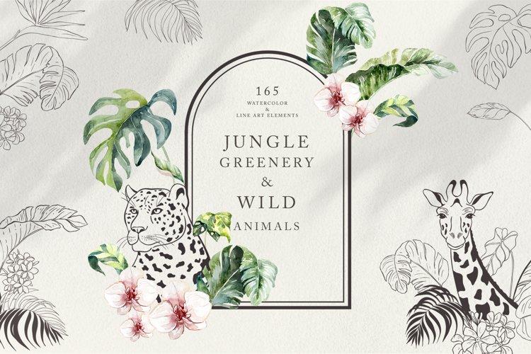 Jungle Greenery & Wild Animals.