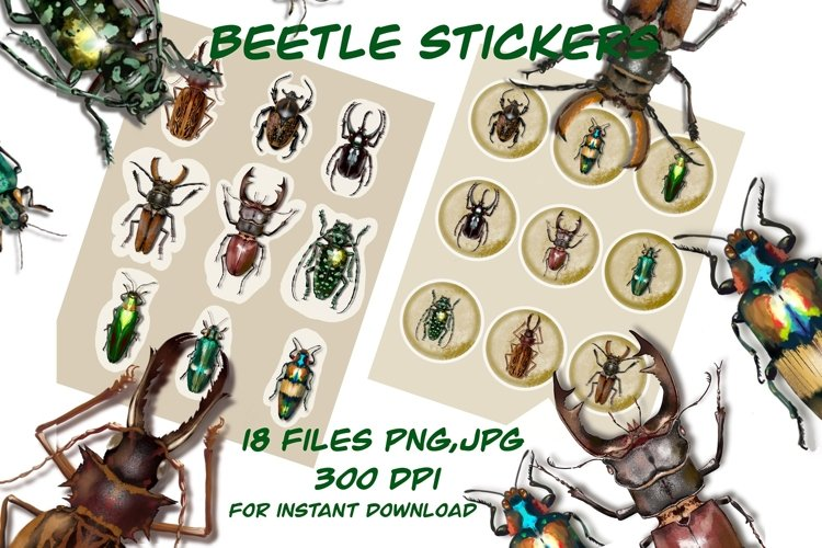 Beetle stickers ,Insect leaf cliparts