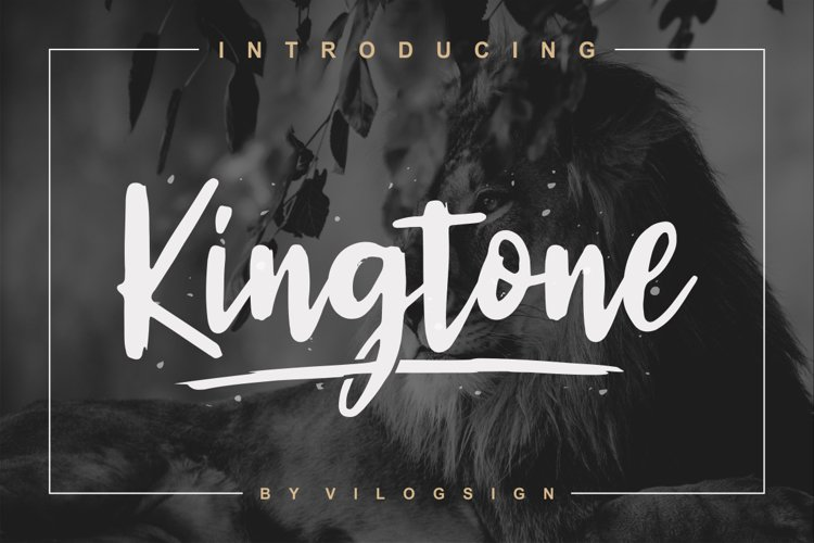 Kingtone // Handcrafted Script Font example image 1