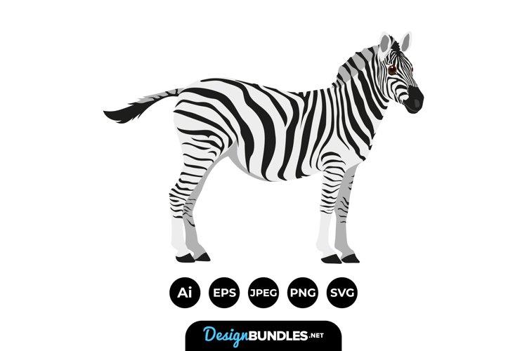 Zebra Clipart example image 1