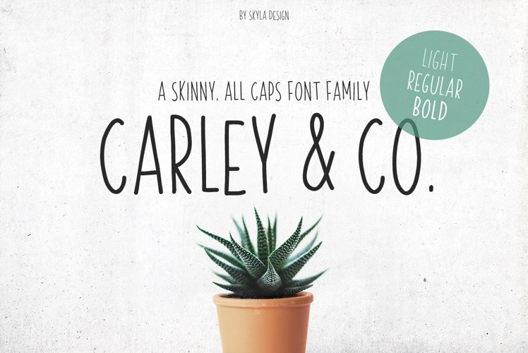 Skinny, handwritten, All Caps font family Carley & Co.