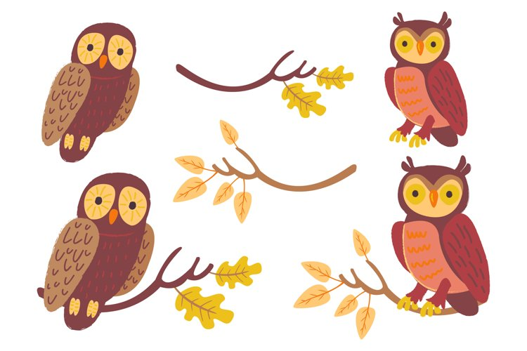 Autumn Owls and Fall Elements, Woodland Animals Clipart example 1