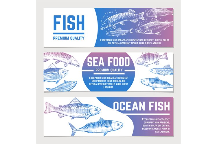 Fish banners. River and ocean sketch fishes seafood packagin example image 1