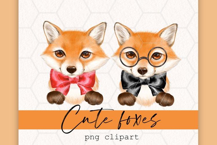 Cute little foxes