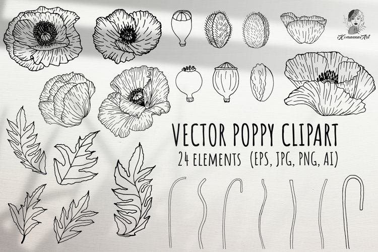 Poppies vector black handdrawing clipart create poppy! example image 1