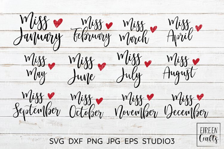 Miss January to Miss December SVG bundle