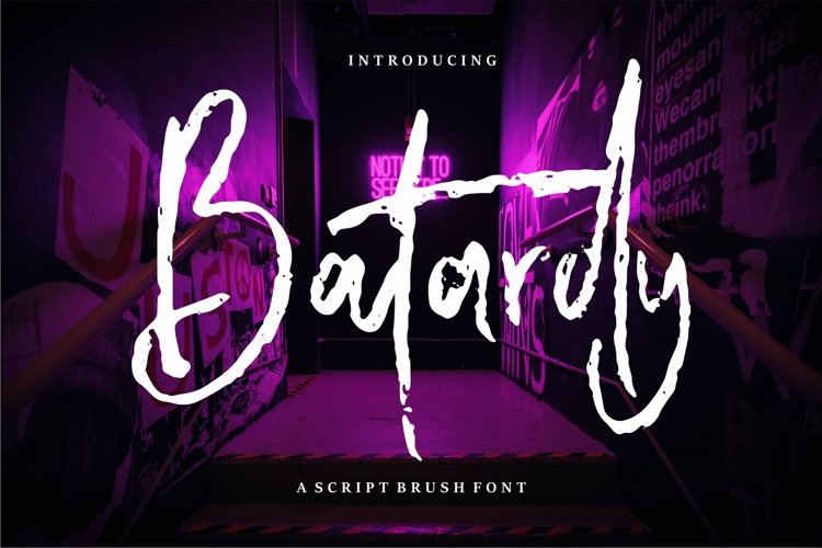 Batardy - A Script Brush Font example image 1