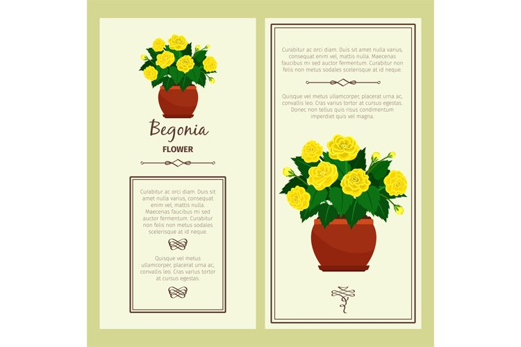 Greeting card with begonia plant example image 1