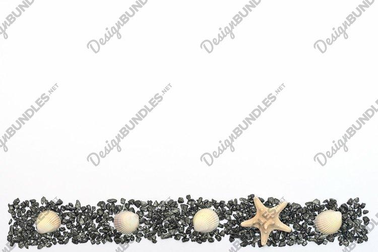 White starfish on small dark stones with sea shells on white